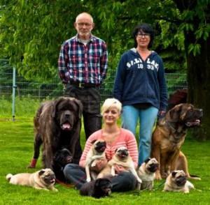 Familie_Hunde_web
